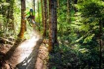 Mountain biker on public lands. Photo by IMBA.
