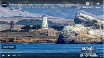 Piedras Blancas Light Station newscast about whale migration. Photo by KSBY News.