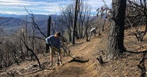 Redding Trail Alliance working to repair trails from Carr Fire. Photo by KRCR News.