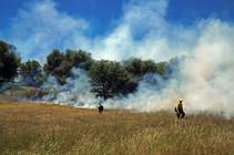 Cronan Ranch Rx burn. Photo by Monte Kawahara, BLM.