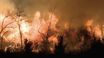 wildfire-usgs-photo