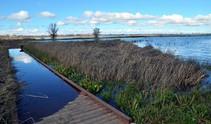 Cosumnes River Preserve. Photo by BLM.