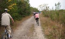 Bikers on a trail.