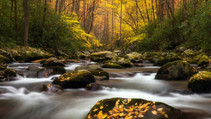 great smoky mountains in autumn