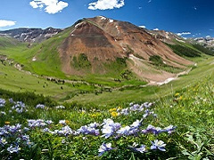 A mountain in a valley with wildflowers