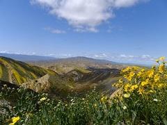 Caliente Mountains in Carrizo Plain