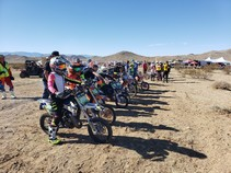 A photo of a lineup for a motorcycle race.