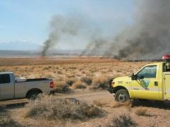 Several pile burns in the a desert landscape