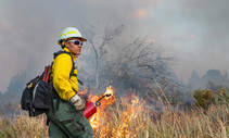 A photo of a BLM fire fighter