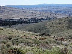 A photo of high, dry desert in the great basin.