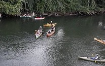 Kayaks in a river.