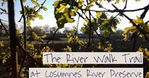 Video still that reads: The river walk trial at Cosumnes River Preserve.