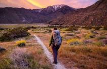 A hiker on a trail.