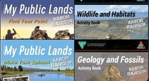 A collection of junior ranger booklets.