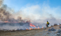 A firefighter monitors a prescribed fire in Nevada.