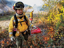 A firefighter igniting brush as part of a prescribed burn.