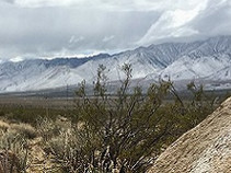High desert with snow caped mountains in the background.
