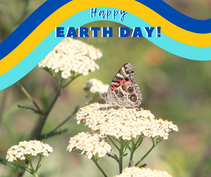 A photo of a butterfly on a flower with the words happy earth day.