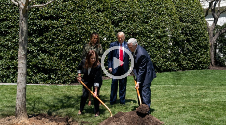 POTUS, FLOTUS, VPOTUS, SLOTUS plant a tree for earth day.