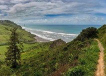 Image of a trail winding through lush green fields by the Pacific Ocean.