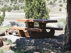 A shaded picnic table next to a fire ring.