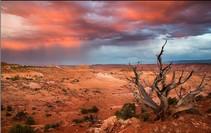 Sunset colors over a desert landscape.