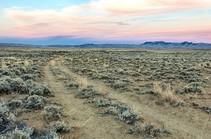 A track through flat desert landscape.
