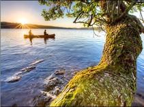 A canoe in a lake.