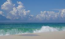 A beautiful beach.