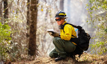 U.S. Fish & Wildlife employee Annalee Graves takes a moment to assess the progress of a prescribed fire during training in Tallahassee, Florida.