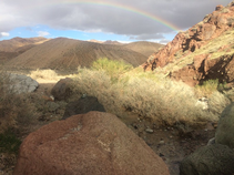 Rainbow over a desert landscape.