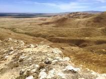 Panoche Hills.