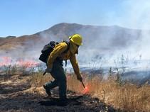 A fire fighter igniting a prescribed burn.