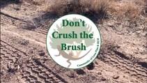 Don't crush the brush.