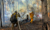 U.S. Fish and Wildlife firefighter Reynaldo Navarro attacks a spot fire with an Australian firefighter.