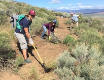 Volunteers clearing a trail.