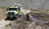 BLM fire truck and firefighter putting out a brush fire.