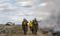 BLM firefighters walking or a dirt road next to a prescribed burn.