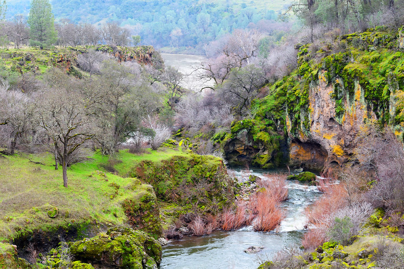 Sacramento River flowing by oaks and a rocky rivers edge.