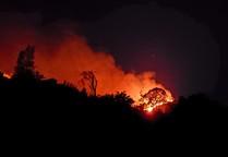 Fire burning on a hillside at night.