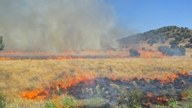 Fire burning in a dry field.