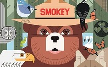 Graphic with Smokey Bear and other forest animals.