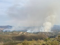 Fire burning on a hillside.