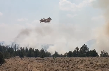 Super scooper aircraft flying over a forest with billowing smoke rising.