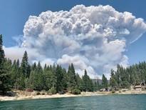 Huge smoke pyrocumulous cloud above a forest.