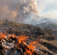 Fire burning on a hillside with smoke billowing in the background.
