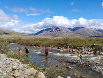 People walking across a slow moving creek with mountain range in the background.