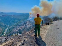 Firefighter standing on a ridge looking into a canyon.