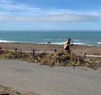 Person working near the shoreline.