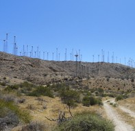 Wind turbines along a hillside with a dirt road leading to them.